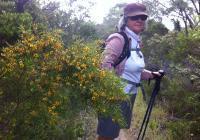 Marcella on the Cape to Cape Track